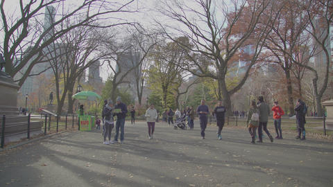 A Sunny day in Central Park and the square with pictures Footage