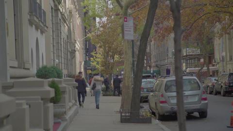 228 Golden autumn in NEW YORK Footage