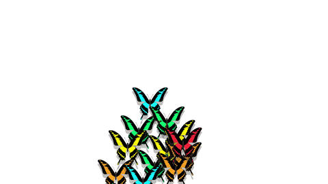 animated multicolored butterflies arrive, make up an inscription number 2 Animation