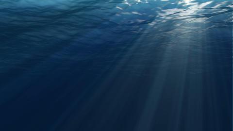 Underwater scene. Large popular marine background Footage