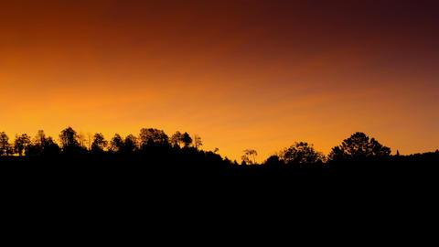 Time lapse sunrise over trees Footage