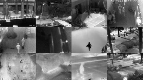Clip from Surveillance Cameras with Thermal Imaging Footage