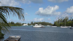 Bermuda islands bay with motorboats at anchor and palm leaves in foreground Footage