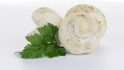 Champignon mushroom white agaricus with parsley Footage