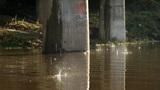 Raindrops Footage