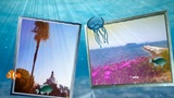 Underwater Album stock footage