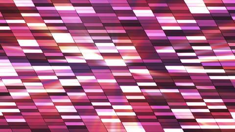 Twinkling Horizontal Slant Hi-Tech Small Bars, Magenta Purple, Abstract, Loopable, HD Animation