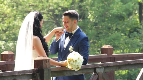 The Bridegroom Kisses the Bride's Hand Live Action