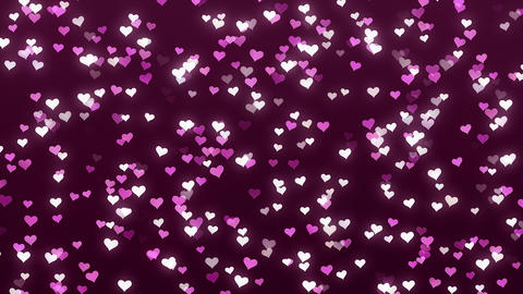 Animation of white and pink hearts on a claret background Footage