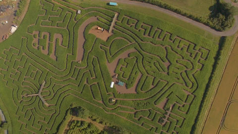 Drone shot of green maze Footage