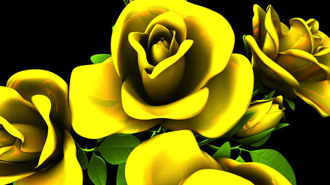 Yellow Roses Bouquet On Black Background CG動画