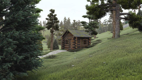 Old log hut at coniferous forest Footage