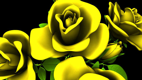 Yellow Roses Bouquet On Black Background Animation