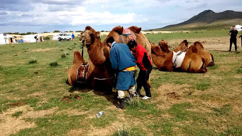 Camel Riding in the Gobi Footage
