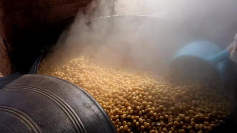Making Bean Paste Footage