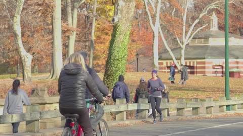 Daytime in Central Park, slow motion Footage