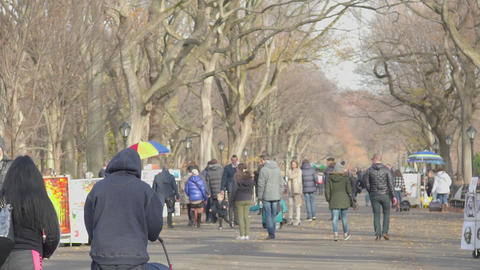 A Sunny day in Central Park and the square with pictures, slow motion Footage