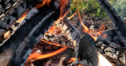 Bonfire close-up. Evening Footage