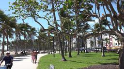 USA Florida Miami Beach sports on walkway in Lummus Park Ocean Drive ビデオ
