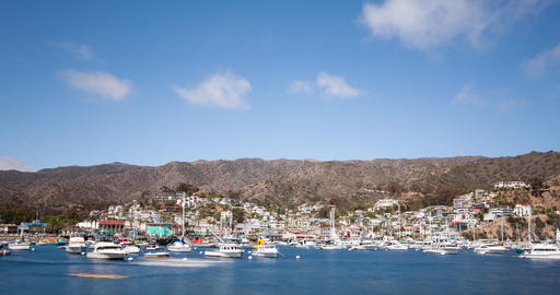 Bay and Town of Avalon on Catalina Island Image