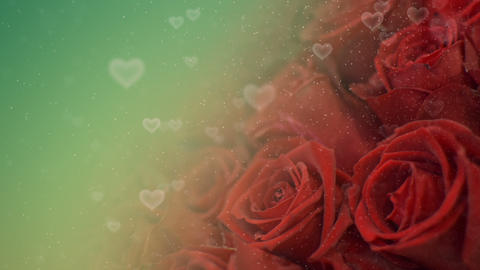 Roses Hearts Background Stock Video Footage