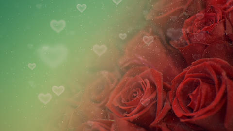 Roses Hearts Background Animación