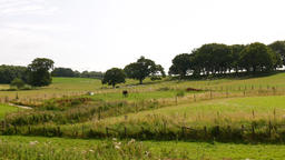 England's green and pleasant land Bild
