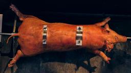 Suckling pig on grill Archivo