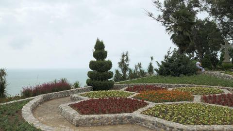 Flowerbed in one of the biggest botanical park - Batumi, Georgia Footage
