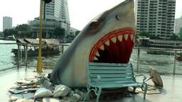 Thailand Bangkok 106 Chao Phraya River, head of shark coming through the floor Footage