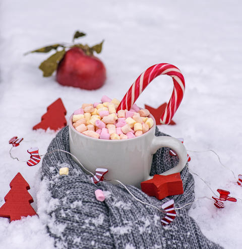 gray cup with hot chocolate and marshmallow Photo