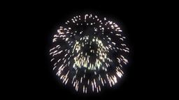 Firework 05 Animation