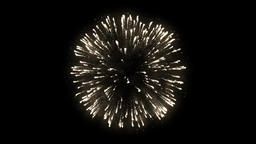 Firework Animation