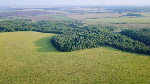 Span over the forest and fields. Panoramic view. Russia, From Dron Footage