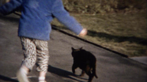 1963: Kids bother cat with rough play runs away for safer... Stock Video Footage