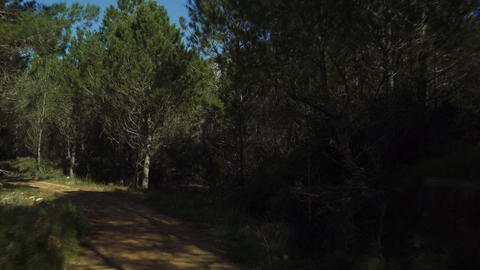 Offroad with a Jeep Wrangler in an andalusian forest, Spain Live Action