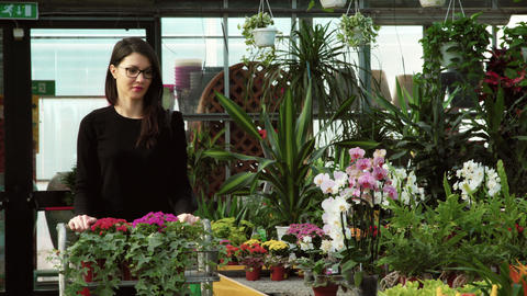 Client Shopping Buying Flowers Smiling To Camera In Florist Shop Image