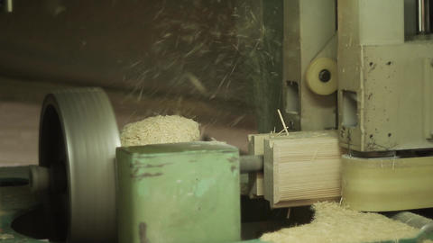 Woodworking conveyor in the factory Live Action