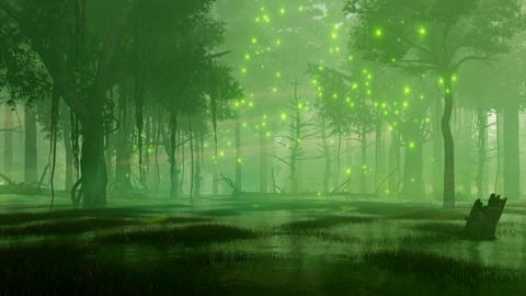 Mystical firefly lights in swampy night forest Animation
