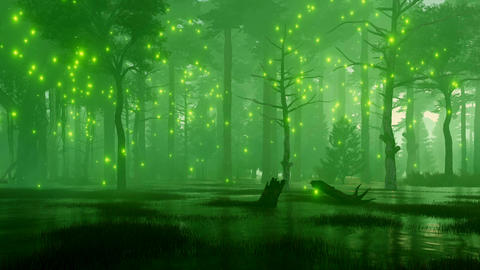 Marshy night forest with mystic firefly lights CG動画素材