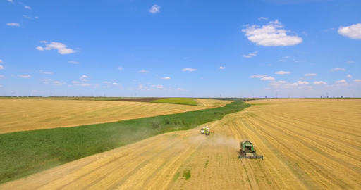Aerial drone shot of a combine harvester working in a wheat field ビデオ