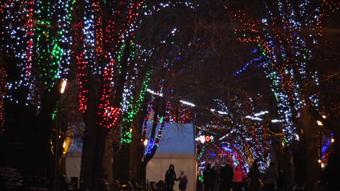 Night LED illumination on Primorsky Boulevard in Odessa Live Action