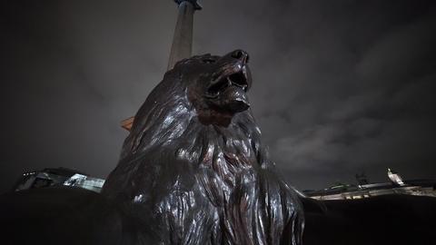 The Lion at Trafalgar Square London - LONDON, ENGLAND Live Action
