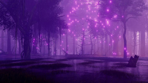 Night forest swamp with mystical firefly lights Animation