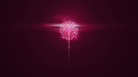 Fireworks CG Festival Animation