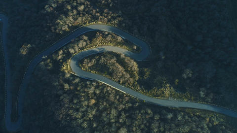 Aerial view of curve empty roadway in green forest Footage