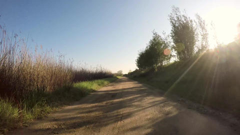 Point Of View Shot Of Riding A Bicycle stock footage