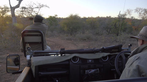 Sunrises during a morning safari Footage