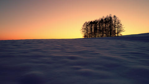 Aerial - Dawn's snowy field and distant trees 画像