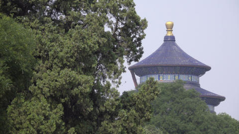 Temple of Heaven peeks out from behind trees Live Action
